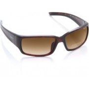 Pepe Jeans Round Sunglasses(Brown)