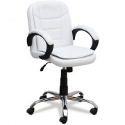 DZYN Furnitures Leatherette Office Executive Chair (White)