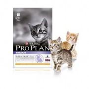 Purina Pro Plan Junior Gato Pollo - Saco de 1,5 Kg