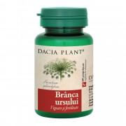 DACIA PLANT BRANCA URSULUI 60 CPR
