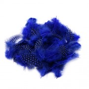 Magideal 50PCS Lots Dyeing Guinea Hen Feather Feathers 5-10cm Sapphire Blue