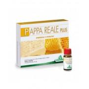 Sterilfarma Srl Specchiasol Pappa Reale Plus Senza Glutine 10 Flaconi Da 10ml