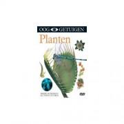 Coast To Coast Music Group B.V. Planten