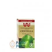 Gdp srl-general dietet.pharma Winter Centella 30cps Veg
