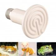 Duola Luz Pet Lámpara Infrarroja Térmica De Cerámica Para Reptiles Anfibios Clueca 100W
