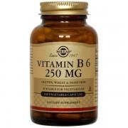 Vitamina B6 250mg - 100 vcaps