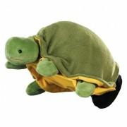 Żółw - pacynka