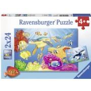 Puzzle Acvatic 2X24 Piese