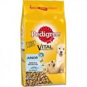 Pedigree Dry 2kg Junior Talie Mare