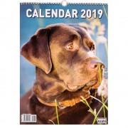 Calendar Caini 2019 - format mare, de perete, spiralat, 12+1 file