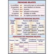 Pronoms relatifs. Formes et functions des pronoms relatifs/Le pluriel des noms.Cycle primaire