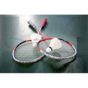 Best Ideas Combo of 2 Pcs Badminton Rackets/Racquets (With Cover) and 10 Pcs Finest Quality Feather Shuttles