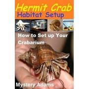 Hermit Crab Habitat Setup: Hermit Crab Care and Habitat Set-Up, Paperback/MR Mystery Adams