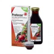 SALUS Pharma GmbH PROTECOR Herz-Aktiv Spezial-Tonikum 250 ml