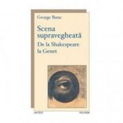 Scena supravegheata - George Branu