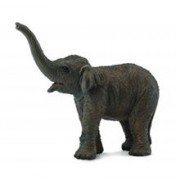 Figurina Pui De Elefant Asiatic S Collecta