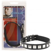 Leather Collar 1in. W/Assorted Studdes