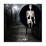 Schelet decorativ Halloween 30 cm