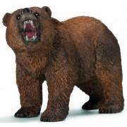 Ursul urs