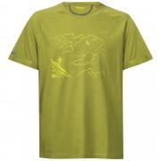 Tricou Bergans Mountaineering - Verde