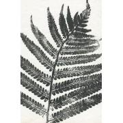 Werk aan de Muur Schilderij Tropisch blad (gezien bij vtwonen) - Aluminium Dibond - 80x120
