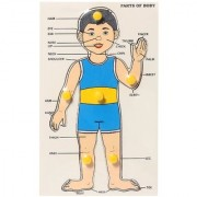 KIDS WOODEN PUZZLE - PARTS OF BODY