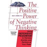 The Positive Power of Negative Thinking, Paperback/Julie Norem