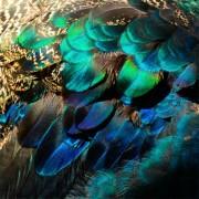 MondiArt Alu Feather Pastel 1040983