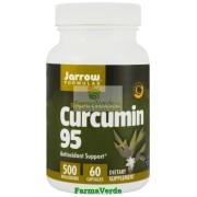 Curcumin 95 Antioxidant 60 Capsule Jarrow Secom