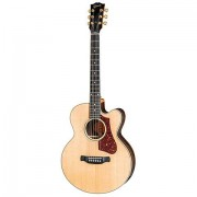 Gibson Parlor Rosewood AG