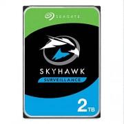 Seagate Skyhawk 2TB Disco Duro de vigilancia SATA 6 GB/s 64 MB caché 3.5 Pulgadas Disco Interno Paquete abrefácil (ST2000VX008)