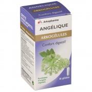 Arkogélules Arkopharma Arkogélules Angélique 45 pc(s) 3401547916651
