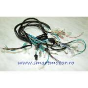 Instalatie electrica 12