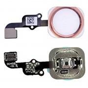 Cabo flex de Botão de Início para iPhone 6S / 6S Plus - Rosa Dourado