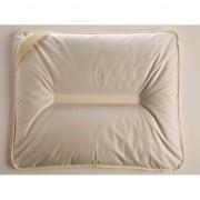 Jastuk punjen heljdinim ljuspama Komodo H 50x60 cm 446