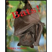 Bats: Learn about These Strange and Wonderful Creatures of the Night, Paperback/Terry Mason
