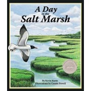 A Day in the Salt Marsh, Paperback/Kevin Kurtz