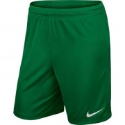 Nike - Shorts Park II Knit With Brief Grön Barn