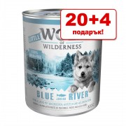 20 + 4 подарък! Консервирана храна Wolf of Wilderness 24 x 800 г - White Infinity - конско