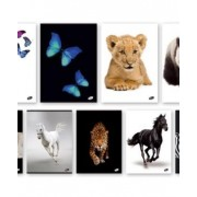 Тетрадка A5 UV Animals, 60+2 л.ред, 70 г/м2
