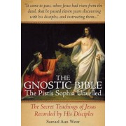 The Gnostic Bible: The Pistis Sophia Unveiled, Paperback