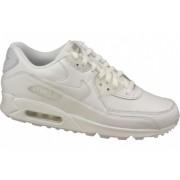 Nike Air Max 90 Ltr 302519-113