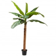 Kare Design Planta decorativa Bananero