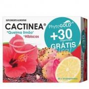 Phytogold Cactinea + Hibiscos + Limão 30 + 30