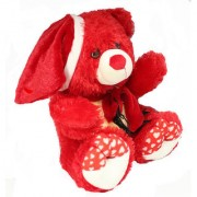 Red Colored Teddy with Bow and Hat