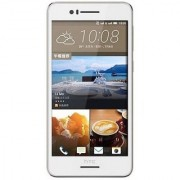 HTC Desire 728 Dual Sim (2 GB/16 GB/White + Gold)