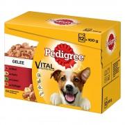 Pedigree Multipack bolsitas - Megapack % - 48 x 100 g en gelatina