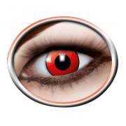 Prolens AG Red Manson 640 - 2 Kontaktlinsen