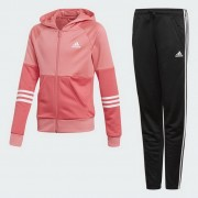 Adidas Performance Yg Hood Pes Ts jogging set
