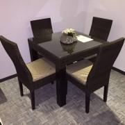 Tafel met 4 stoelen inlcusief kussens